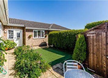 Thumbnail 4 bedroom detached bungalow for sale in The Orchards, Witcham, Ely