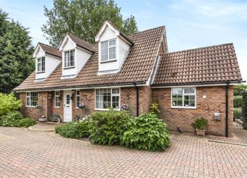 Thumbnail 4 bed bungalow for sale in Strubby Road, Alford
