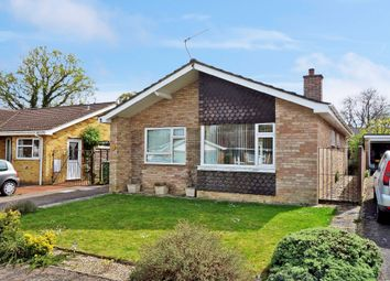 Thumbnail 2 bed detached bungalow for sale in Babington Drive, Halesworth