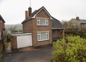 Thumbnail 3 bed detached house to rent in Silver Street, Littledean, Cinderford