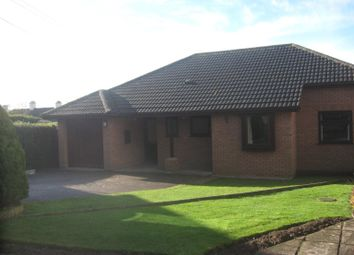 Thumbnail 3 bed detached bungalow to rent in Awliscombe, Honiton