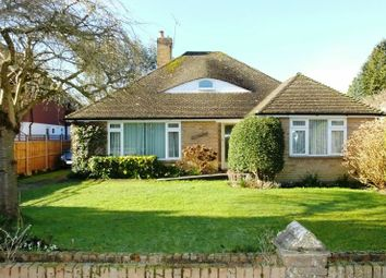 Thumbnail 3 bed bungalow for sale in Horsell Rise, Horsell, Woking