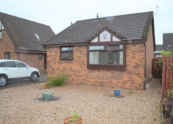 Thumbnail 3 bed detached bungalow to rent in Chestnut Grove, Stenhousemuir, Larbert