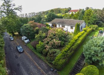 Thumbnail 4 bed bungalow for sale in 18, Wilton Park Road Hawick