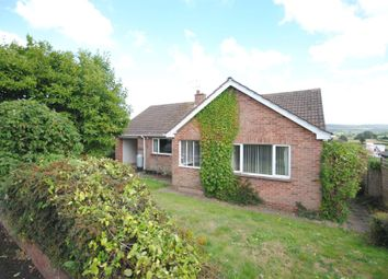 Thumbnail 3 bedroom detached bungalow for sale in Greenbank, Winters Lane, Ottery St. Mary, Devon
