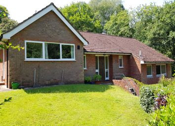 Thumbnail 3 bed detached bungalow for sale in Haste Hill, Haslemere, Surrey