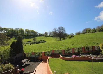Thumbnail 4 bed detached house for sale in Upton Hill Road, St Mary's, Brixham