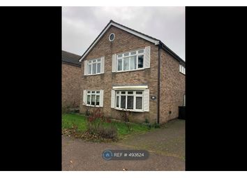 Thumbnail 6 bed detached house to rent in Berrimans Close, Colchester