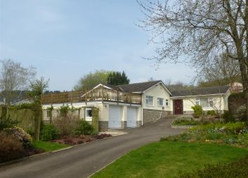 Thumbnail 4 bedroom detached bungalow to rent in Court House Road, Llanvair Discoed, Chepstow