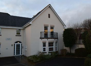 Thumbnail 2 bedroom flat to rent in Constitution Hill, Barnstaple