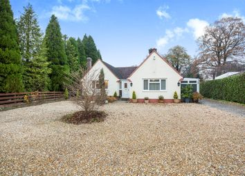 Thumbnail 4 bedroom detached bungalow for sale in Crawley Down Road, Felbridge, East Grinstead