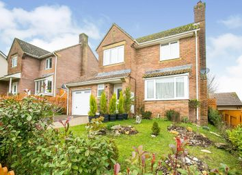 Thumbnail 4 bed detached house for sale in Angler Road, Salisbury