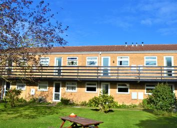 2 bed flat to rent in Regatta Court, Oyster Row, Cambridge CB5
