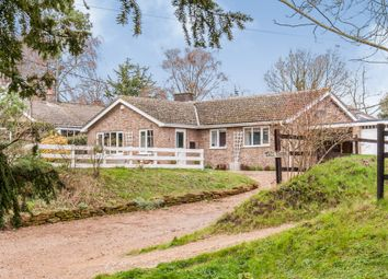 4 bed detached bungalow for sale in Church Road, Garboldisham, Diss IP22