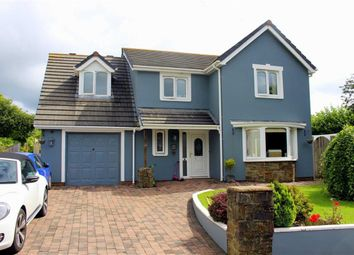 Thumbnail 4 bed detached house for sale in Ryelands Way, Kilgetty