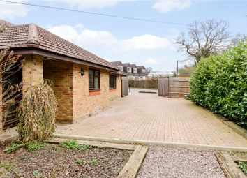 Thumbnail 3 bed detached bungalow to rent in White Lodge Farm, Bulls Lane, Hatfield, Hertfordshire
