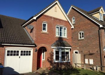 Thumbnail 4 bed property to rent in Campion Road, Hatfield