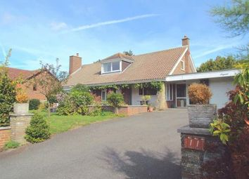 Thumbnail 4 bed bungalow for sale in Pavilion Meadow, River, Dover, Kent