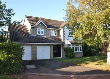 Thumbnail 4 bed detached house to rent in Jameson Drive, Corbridge, Northumberland.