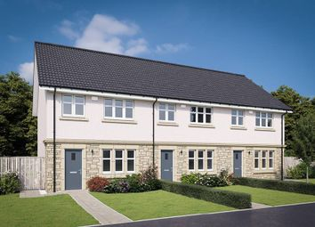 "Thumbnail 3 bed terraced house for sale in ""The Allan"" at Hamilton Road, Larbert"