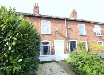 Thumbnail Terraced house for sale in Nelson Street, Norwich
