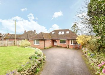 Thumbnail 5 bed detached bungalow for sale in Kings Worthy, Winchester