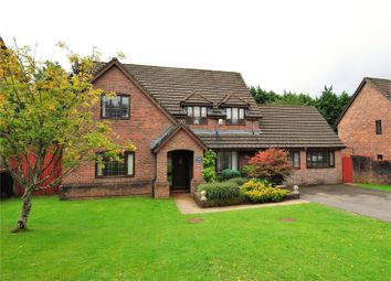 Thumbnail 6 bed detached house for sale in Ruppera Close, Old St Mellons, Cardiff
