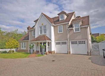 Thumbnail 6 bed detached house to rent in Petworth Close, Great Notley, Braintree