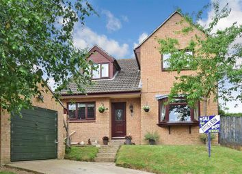 Thumbnail 4 bed detached house for sale in Hornbeam Close, Newport, Isle Of Wight