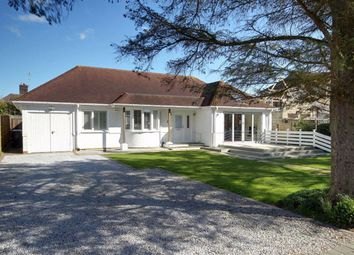 Thumbnail 3 bed detached bungalow for sale in Little Paddocks, Ferring, West Sussex
