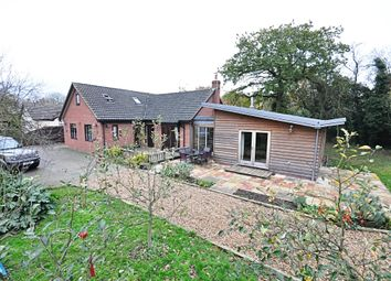 Thumbnail 4 bed detached house for sale in Rectory Road, Gissing, Diss