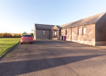 Thumbnail 3 bed detached bungalow to rent in Carmyllie, Arbroath