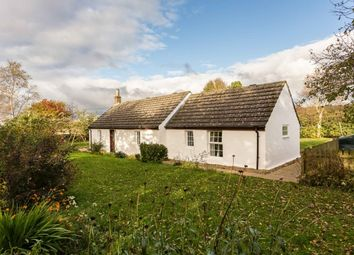 Thumbnail 4 bed cottage for sale in Forfar, Angus