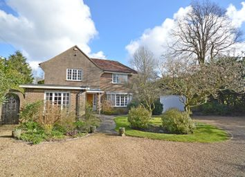 Thumbnail 4 bed detached house to rent in Lavant Road, Chichester