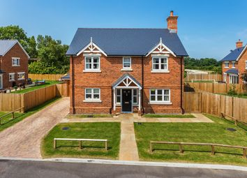 Thumbnail 4 bed detached house for sale in Blue Bird Gate, Horley