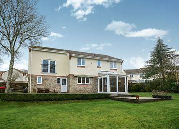 Thumbnail 5 bed detached house for sale in Chestnut Drive, Newton Abbot