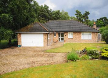 Thumbnail 3 bed bungalow to rent in Wayside Road, St Leonards, Hants