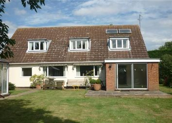 Thumbnail 3 bedroom detached house to rent in Struttle End, Struttle End Farm, Renhold Road