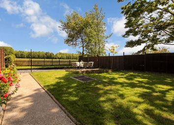 Thumbnail 2 bed semi-detached house for sale in Beccles Road, Toft Monks, Beccles
