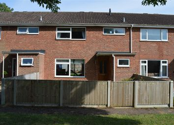 Thumbnail 3 bedroom terraced house for sale in Grey Sedge, King's Lynn