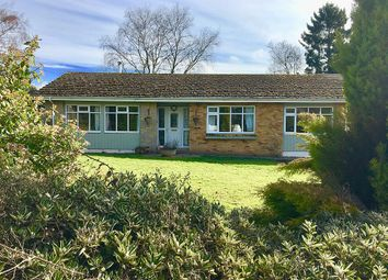 Thumbnail 4 bed detached bungalow for sale in Bredenbury, Bromyard, Herefordshire