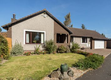 Thumbnail 4 bed detached bungalow for sale in Station Park, Bridge Of Earn, Perth