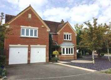 Meiros Way, Ashington, Pulborough, West Sussex RH20. 5 bed detached house