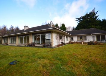 Thumbnail 5 bed bungalow for sale in Torcroft House, Balnain, Drumnadrochit, Inverness