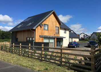 Thumbnail 3 bed detached house for sale in Pencaemawr, Penegoes, Machynlleth, Powys