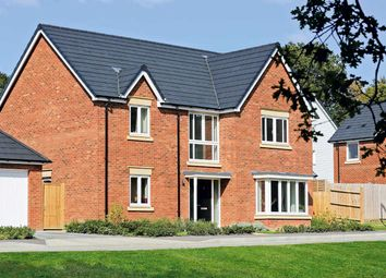 """4 bed detached house for sale in """"The Walmer"""" at Fox Hill, Haywards Heath RH16"""