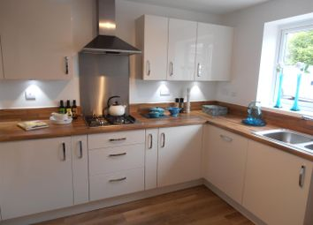 Thumbnail 3 bed semi-detached house for sale in Russell Grove, Werrington, Staffordshire