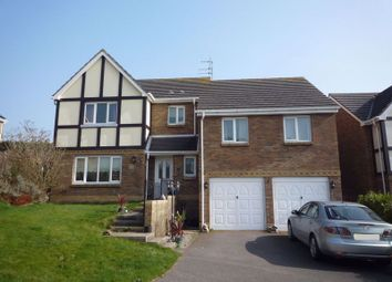 Thumbnail 6 bed detached house for sale in Nyth Yr Eos, Rhoose, Barry