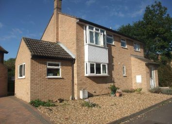 Thumbnail 4 bed detached house to rent in Gloucester Road, Sawtry, Huntingdon