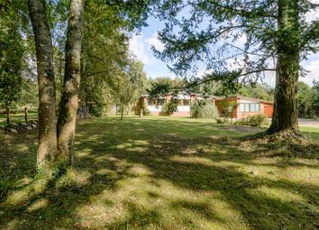 Thumbnail 4 bed detached house for sale in Dock Lane, Beaulieu, Brockenhurst, Hampshire